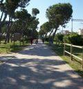 passeggiata pineta filiani